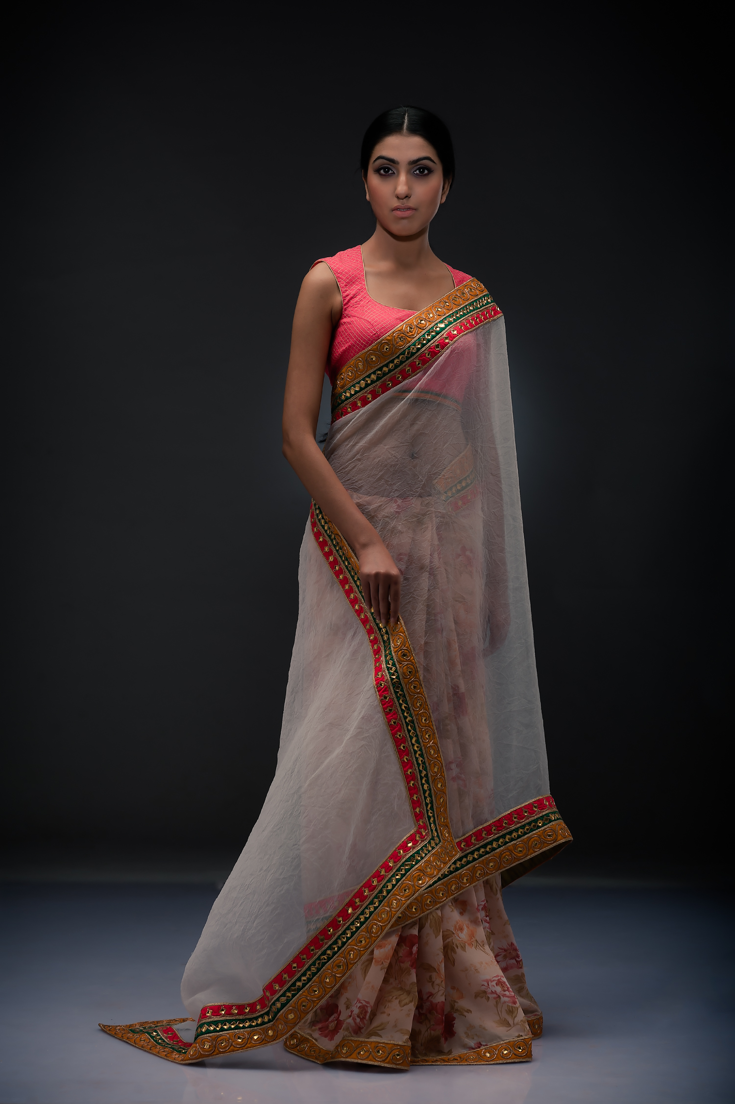Crush Organza Sheer Sari